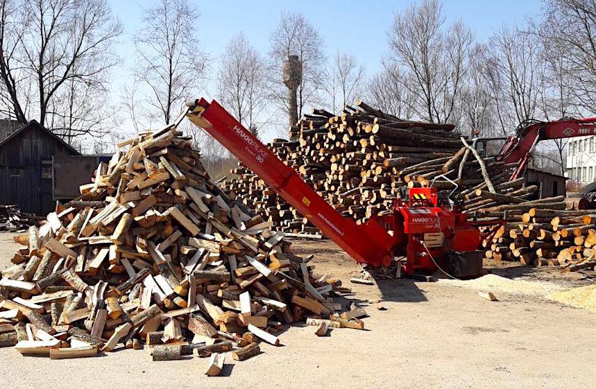 Das war unsere Holzlieferung im Winter 2017-2018: 12 alte Personen profitierten dank uns und unseren Spendern von warmen Stuben